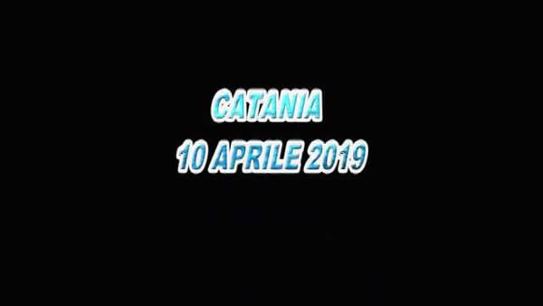 Celebrata la festa della polizia a Catania | Video