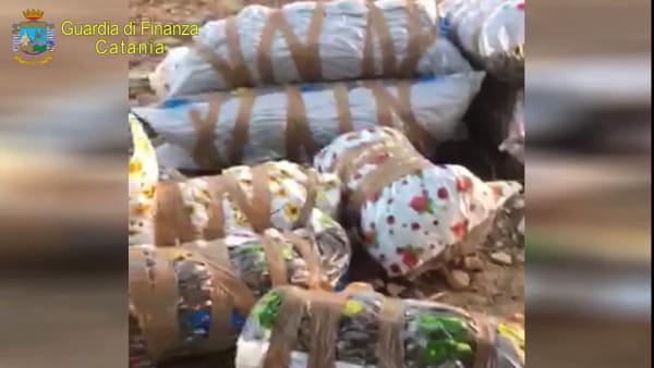 Grammichele, marijuana nascosta sottoterra | VIDEO