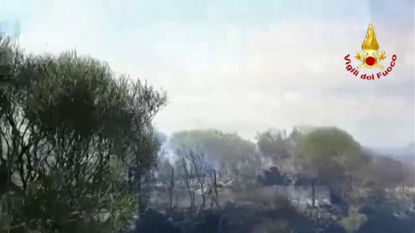 Vasto incendio a Castiglione minaccia le abitazioni, vigili del fuoco all'opera | Video