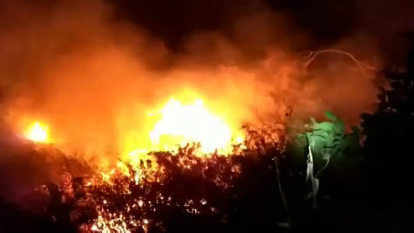 Incendio in una discarica di via Luciano Pavarotti | Video