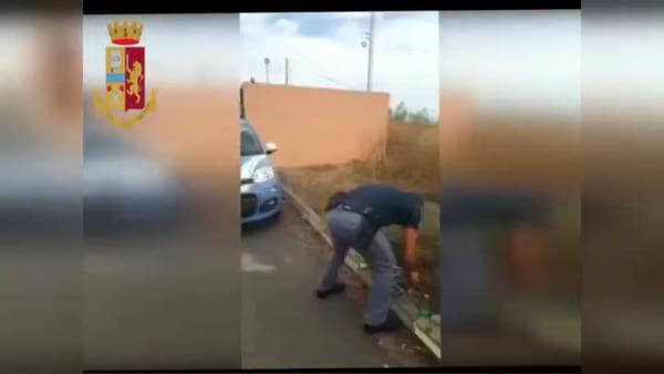 Cardellini in gabbia, l'intervento della polizia | VIDEO