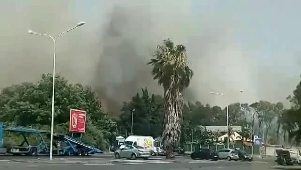 Boschetto della Plaia in fiamme, le immagini dei lettori | VIDEO
