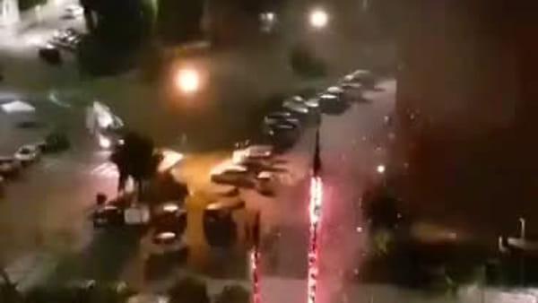 Librino, fuochi d'artificio incendiano le palme di viale Nitta   Video