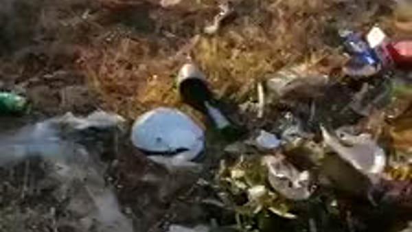 Lungomare, troppi rifiuti gettati nelle aree verdi ed alla scogliera | Video