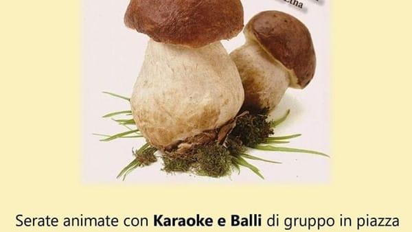 3° Sagra del Fungo Porcino dell'Etna a Fornazzo